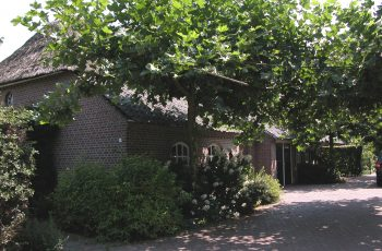 inschijndel-Hopstraat_9